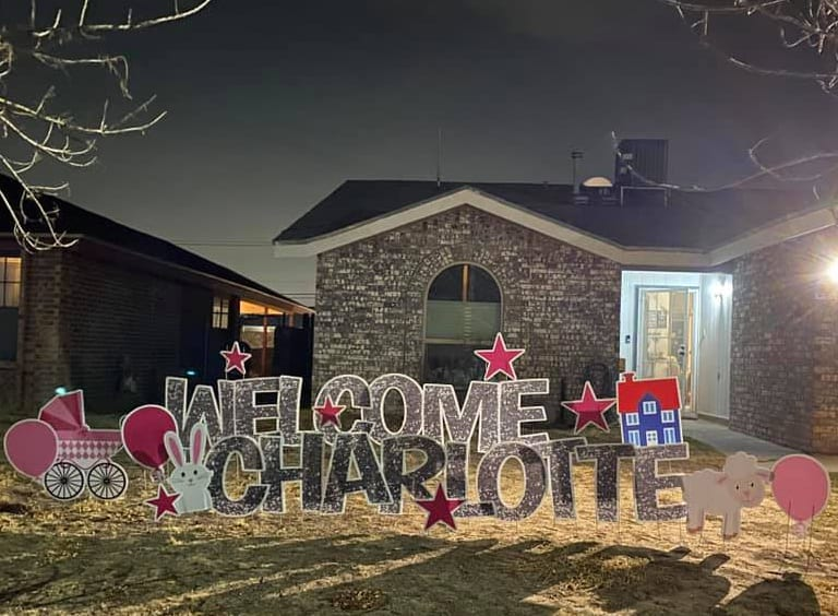 WELCOME-CHARLOTTE---SILVER-GLITTER---SHEEP-BUNNY-HOUSE-CRADLE-PINK-BALLOONS-STARS